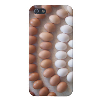 Rainbow Eggs for Rare Breed Hens iPhone 5 Covers