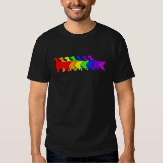 Rainbow English Setter T Shirt