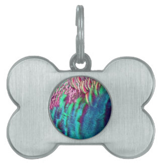Rainbow Feathers Running Pet Name Tag