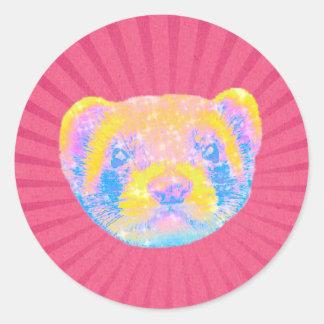 Rainbow Ferret Classic Round Sticker