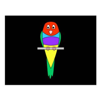 Rainbow Finch Bird. Gouldian Finch. Postcards