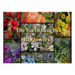 Rainbow Flowers - Earth Laughs by Emerson Poster