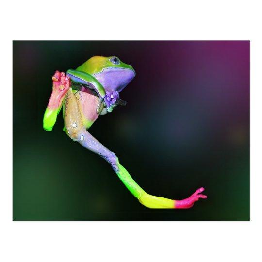 Rainbow Frog Postcard