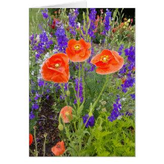 Rainbow Garden Notecards (Blank Inside) Card