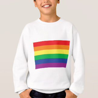Rainbow Gay Freedom Pride Flag Symbol Sweatshirt