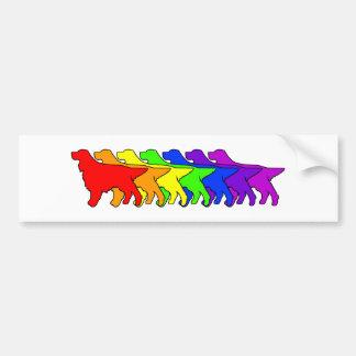 Rainbow Gordon Bumper Sticker