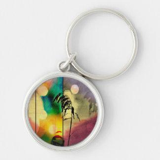 Rainbow Grass Drama Key Chains