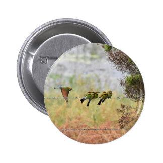 RAINBOW HONEY EATER BIRD QUEENSLAND AUSTRALIA 6 CM ROUND BADGE
