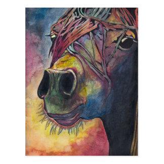 Rainbow horse postcard