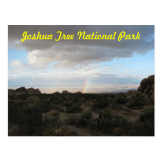 Rainbow in Joshua Tree Postcard