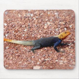 Rainbow Lizard Mouse Pad
