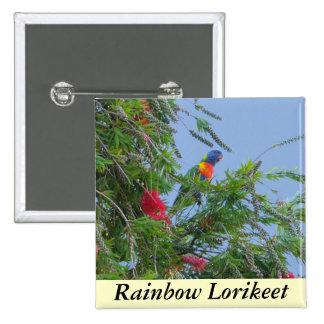 Rainbow Lorikeet 15 Cm Square Badge
