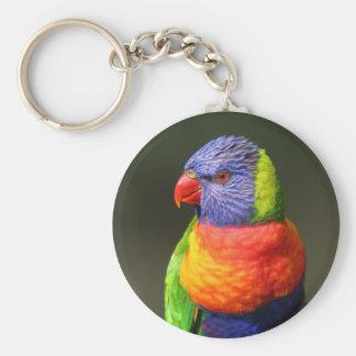Rainbow Lorikeet Basic Round Button Key Ring