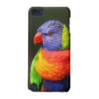 Rainbow Lorikeet iPod Touch (5th Generation) Case