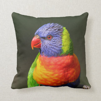 Rainbow Lorikeet Cushion