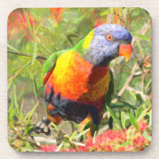 Rainbow Lorikeet Drink Coaster