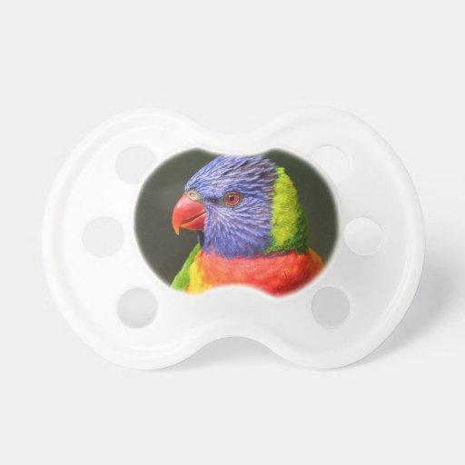Rainbow Lorikeet Baby Pacifiers