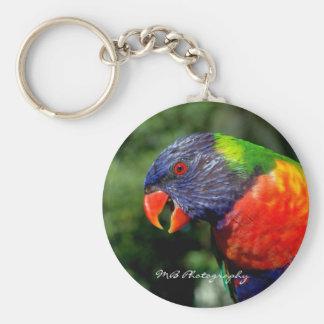Rainbow Lorikeet Keychain