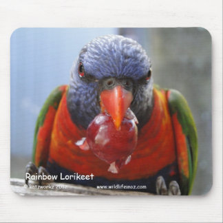 Rainbow Lorikeet Mousepads