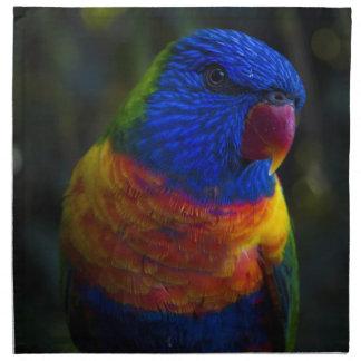 Rainbow Lorikeet Napkin