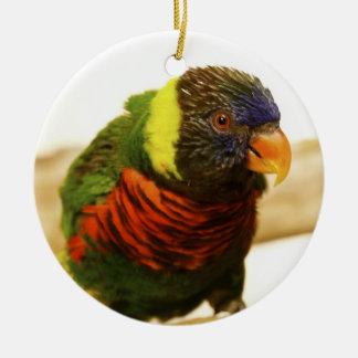 Rainbow Lorikeet Ornament