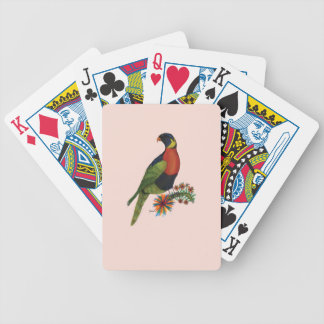 rainbow lorikeet parrot, tony fernandes bicycle playing cards