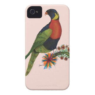 rainbow lorikeet parrot, tony fernandes iPhone 4 case