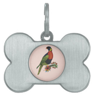 rainbow lorikeet parrot, tony fernandes pet ID tag