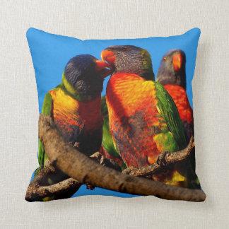 Rainbow Lorikeet photo cushion