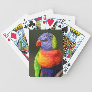 Rainbow Lorikeet Poker Deck