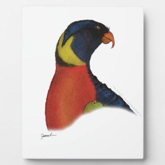 rainbow lorikeet, tony fernandes plaque