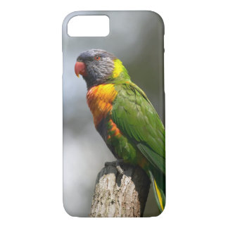 Rainbow Lorikeet (Trichoglossus haematodus iPhone 7 Case