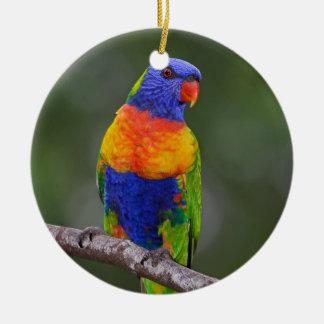 Rainbow Lorikeet Trichoglossus Haematodus Parrot Christmas Ornament