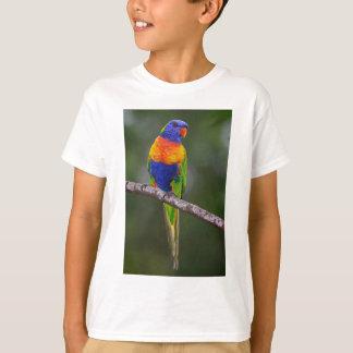 Rainbow Lorikeet Trichoglossus Haematodus Parrot Shirts