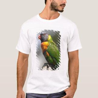 Rainbow Lorikeet (Trichoglossus haematodus T-Shirt