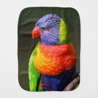 Rainbow Lorikeet Baby Burp Cloth
