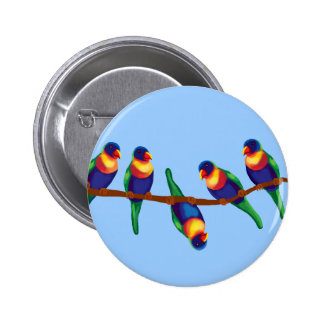 Rainbow lorikeets 6 cm round badge