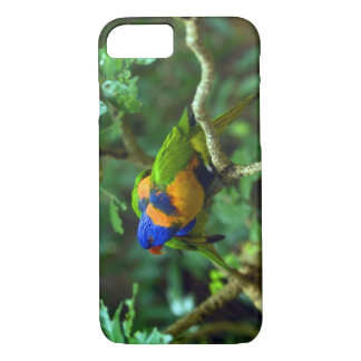 Rainbow Lorikeets iPhone 8/7 Case