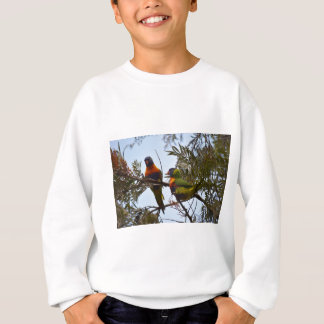 RAINBOW LORIKEETS RURAL QUEENSLAND AUSTRALIA SWEATSHIRT
