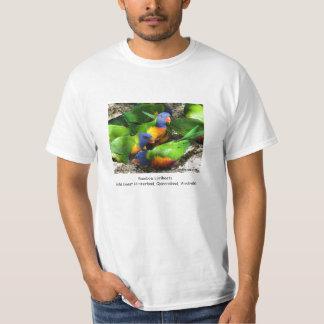 Rainbow Lorikeets Tee Shirt