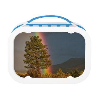 RAINBOW LUNCH BOX
