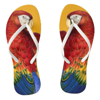 Rainbow Macaw Parrot Lover Bold and Summery Flip Flops