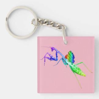 Rainbow Mantis and Toad Key Ring