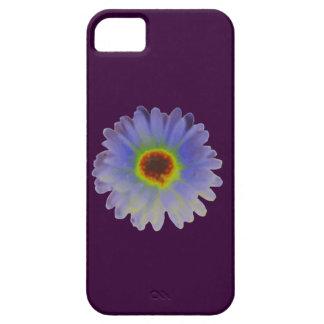 Rainbow Marigold iPhone 5 Case