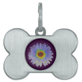Rainbow Marigold Pet Tag
