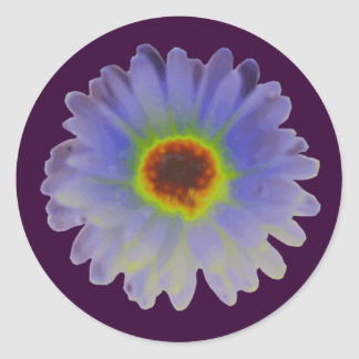 Rainbow Marigold Round Stickers