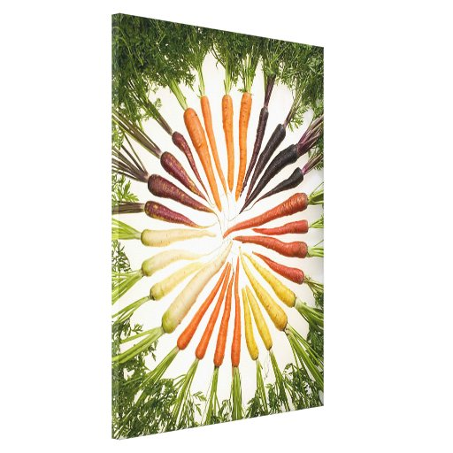 Rainbow Multicolored Carrots Canvas Canvas Prints