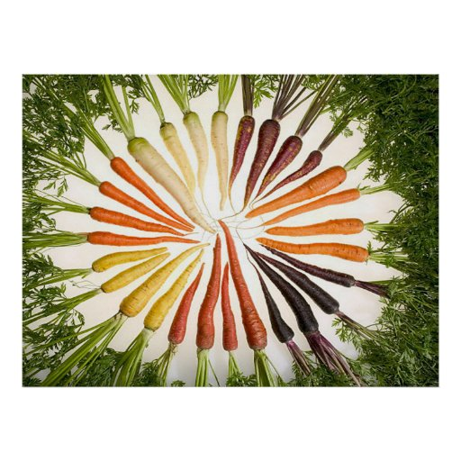 Rainbow Multicolored Carrots Rectangle Poster