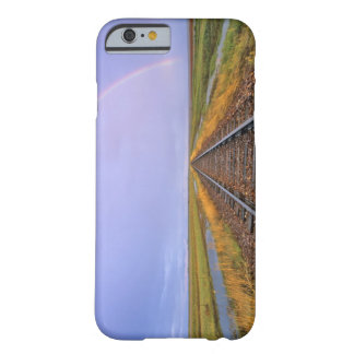 Rainbow over railroad tracks near Fairfield Barely There iPhone 6 Case