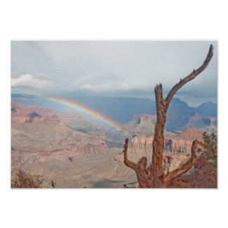 Rainbow over the Grand Canyon Poster
